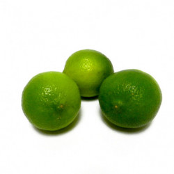 CITRON LIME PEROU CATII 4 KG