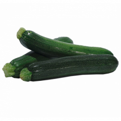 COURGETTE ITALIE CAL 17/21...